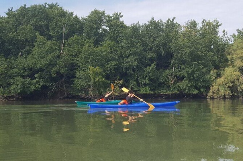 Show item 3 of 5. Private Kayak Tour in the Venetian Lagoon