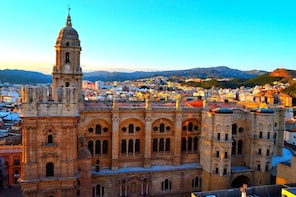 Malaga Private Walking Tour in Spanish