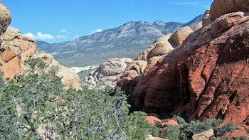 Red Rock VIP Tour