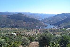 Pinhão Tour with Douro Cruise and Wine Tasting