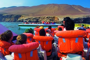 Paracas and Ica Full Day Trip from Lima