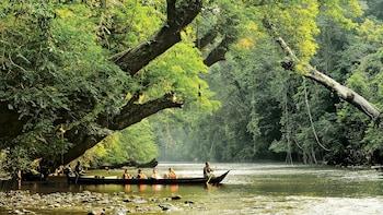 Private 3-Day Taman Negara Excursion