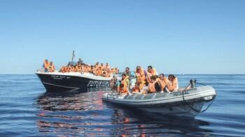 Combo Tour: Whale Watching & Lagoa do Fogo Jeep Tour