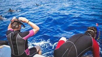 Combo Tour: Swimming with Dolphins & Lagoa do Fogo Jeep Safari