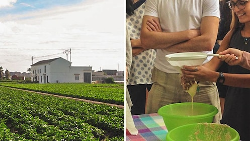Split photo of farmland and two women preparing Horchata drink.