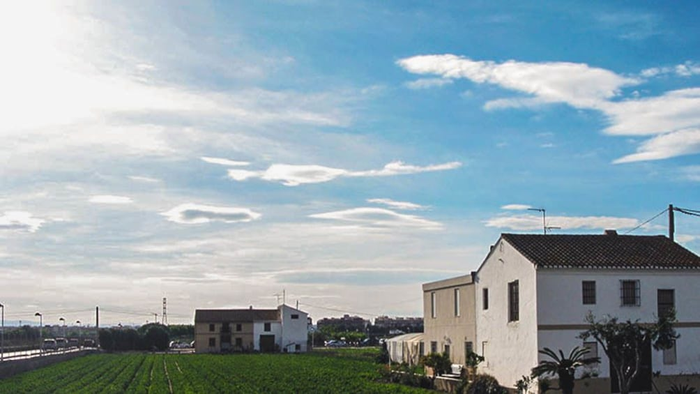 Ver elemento 3 de 5. Landscape view of farmland with houses pictured.