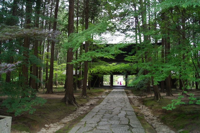 Learn all about Zen Buddhism in Sogen-ji Temple