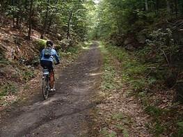 2-Hr. Nature and Wildlife Bike Tour