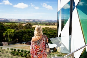 NEW TOUR - Small Group McLaren Vale & The Cube Experience