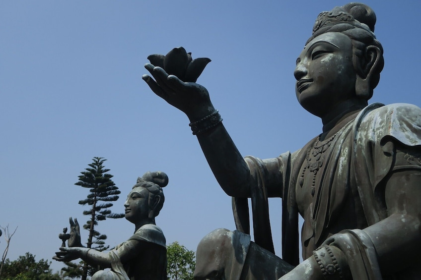 Show item 5 of 8. Lonely Planet Experience: Lantau Island and the Great Buddha