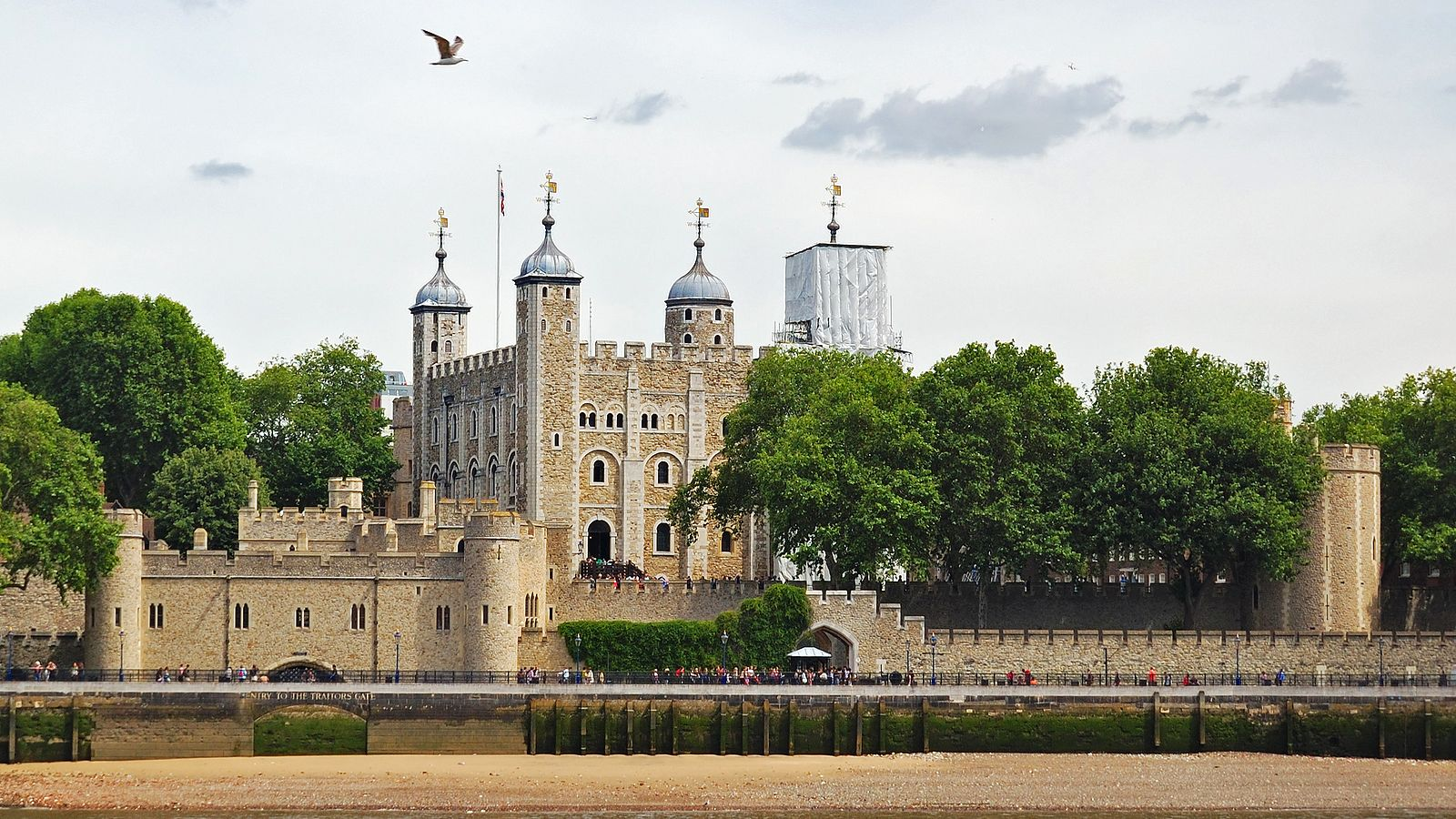 Welcome to London Full-Day Tour