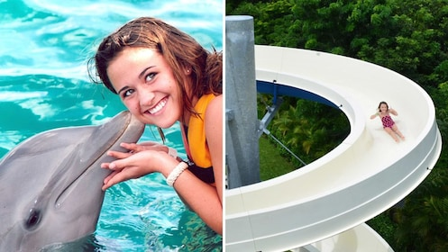 Young girl posing with dolphin, and child sliding down spiral waterslide.