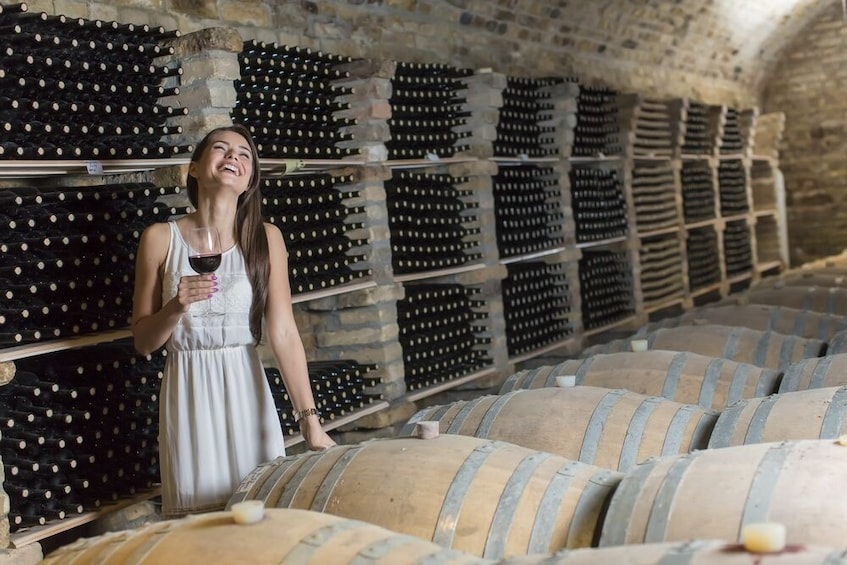 Show item 1 of 6. Wine tasting and visit to the Medieval wine cellar in Friuli