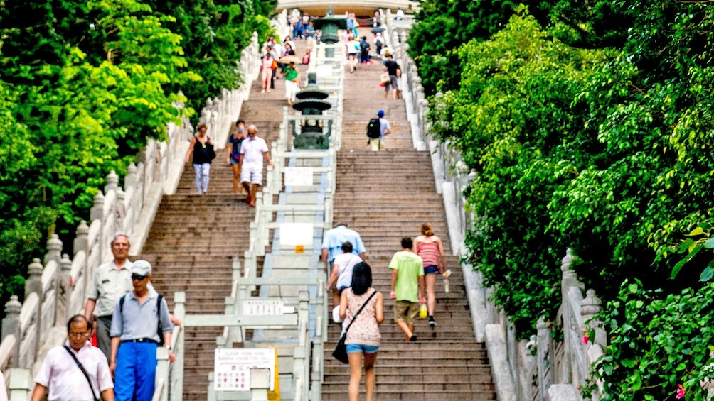 Show item 4 of 10. climbing up the stairs to see the Buddha statue in Lantau Island