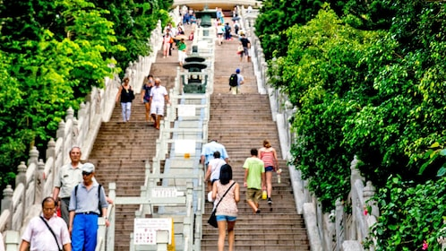 climbing up the stairs to see the Buddha statue in Lantau Island