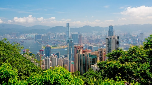 view from the city from top of a mountain in Hong Kong