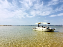 Eco Boat Tour Birds and nature of the Algarve's Ria Formosa