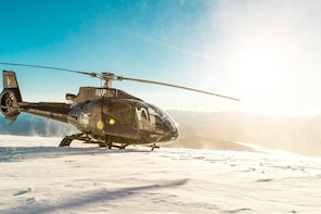 Scenic Helicopter Flight with Alpine Snow Landing