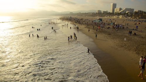 People swimming in the ocean on a sandy beach in Los Angeles