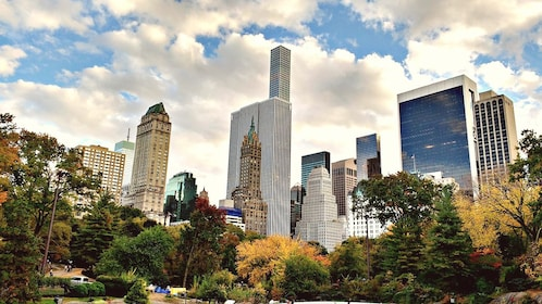 View of NY Skyline from Central Park.