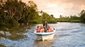 Private Full-Day Klias Wetlands River Safari