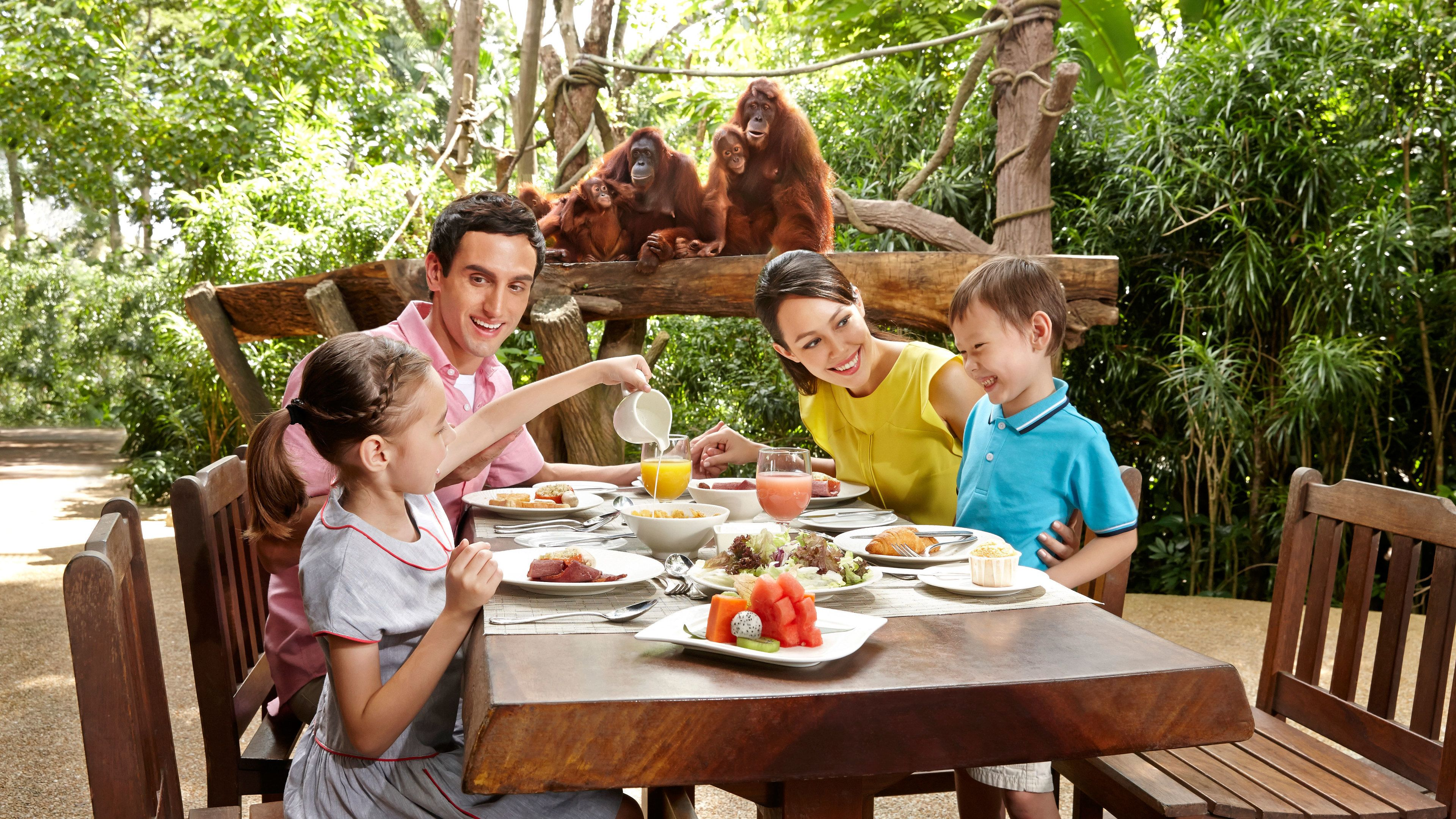 Family eating breakfast with Orangutans watching