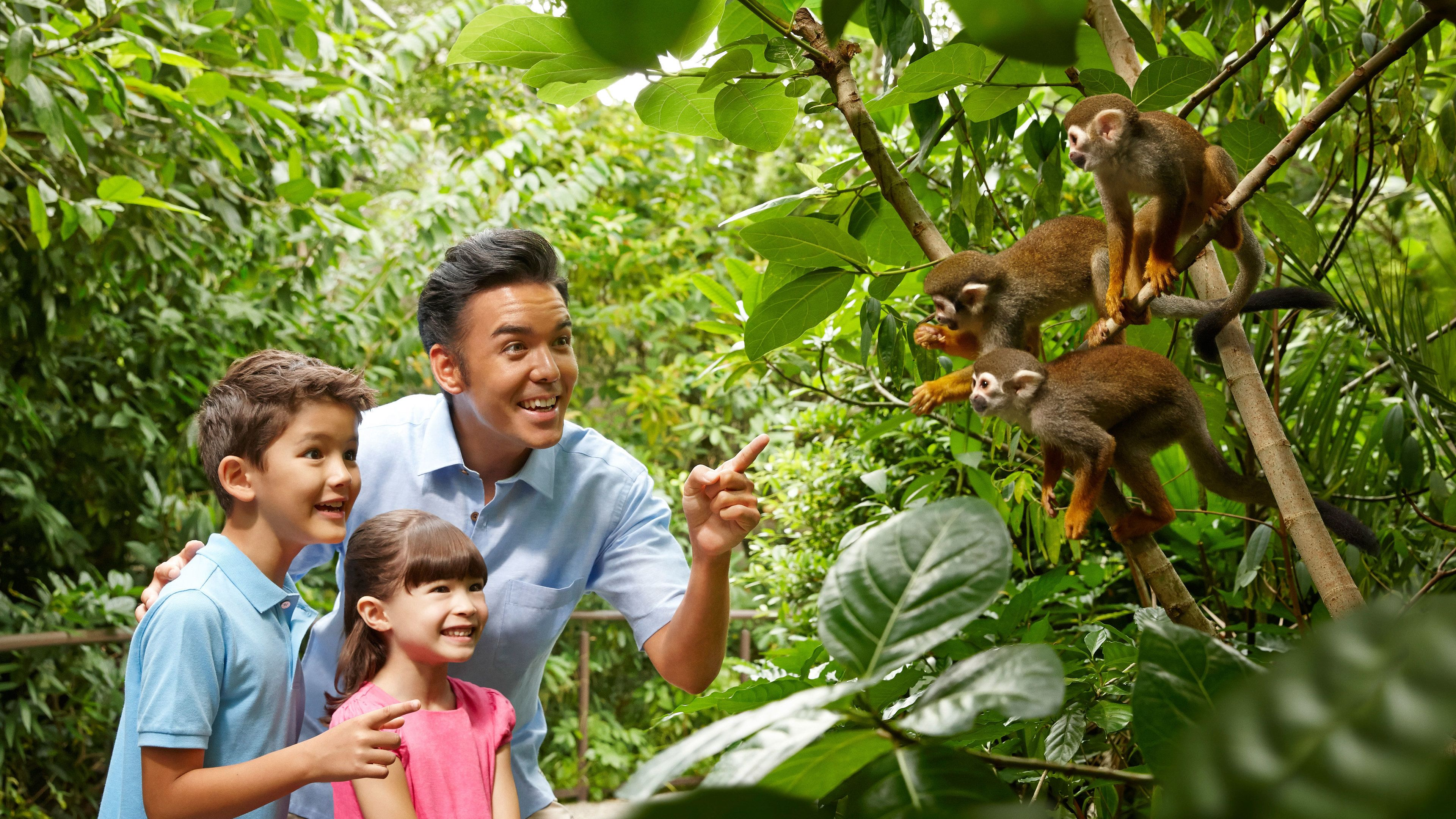 Father, son and daughter get a close look at some monkeys