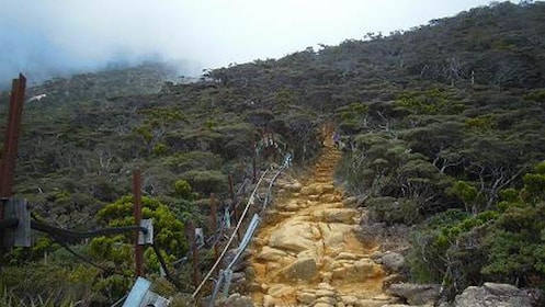 Hiking trail of mountain.