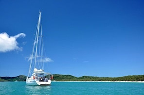 Sailing Curlew Escape on Moreton Bay
