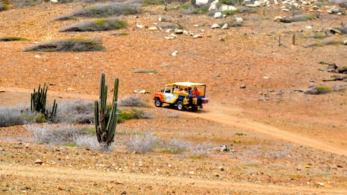 A jeep drives on a trail in Aruba