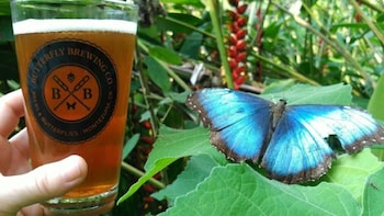Costa Rica Brew Pass - Includes a Beer at 70 Places!