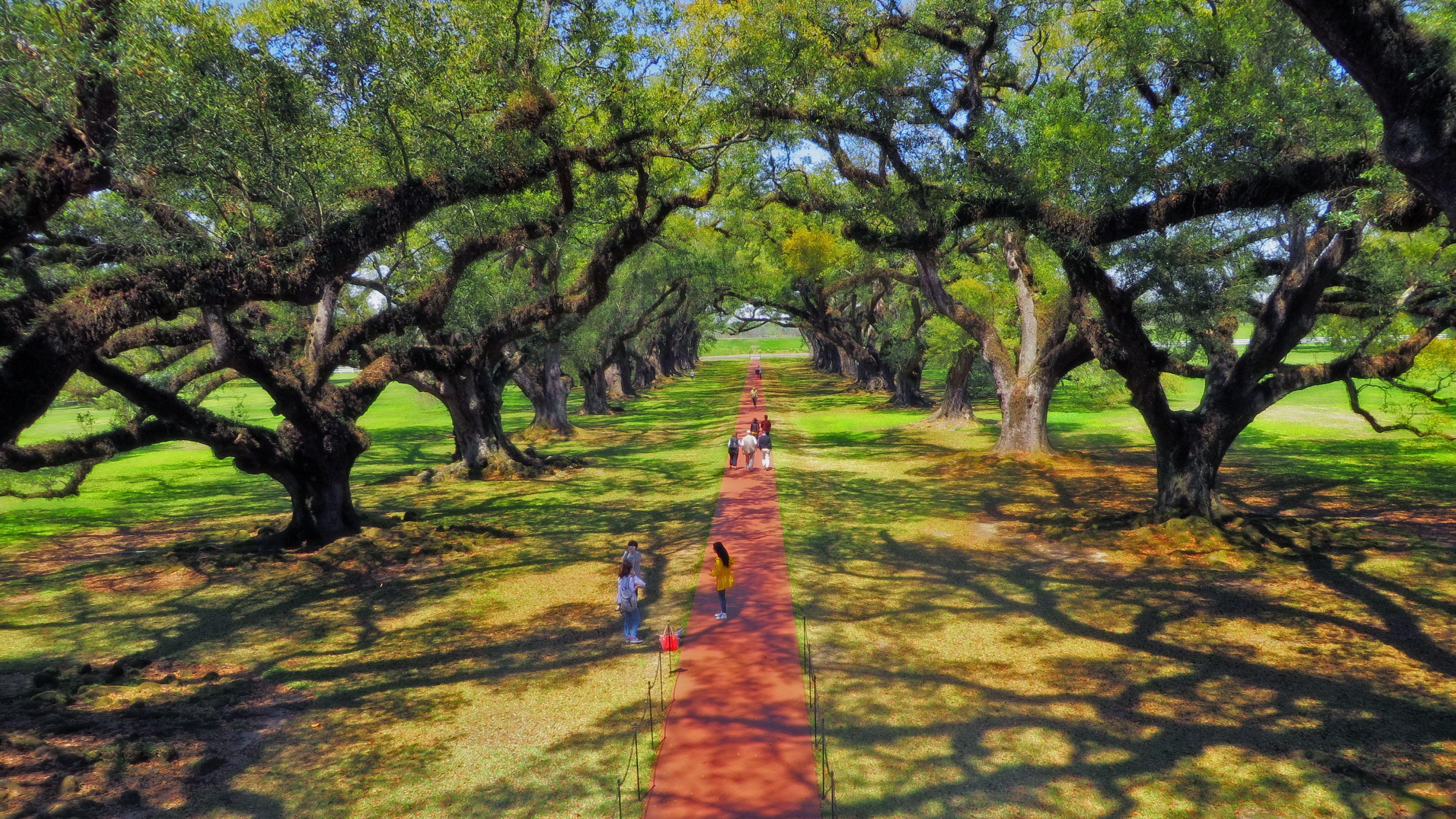 walking path on plantation in new orleans