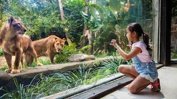 Bali Zoo Admission