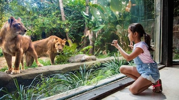 Adgang til Bali Zoo