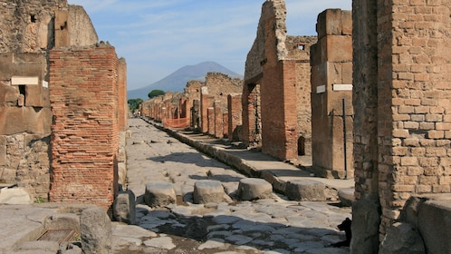 preserved brick structures along a stone road in Pompeii