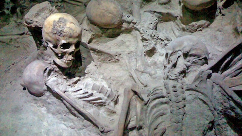 excavated skeletons from Pompeii