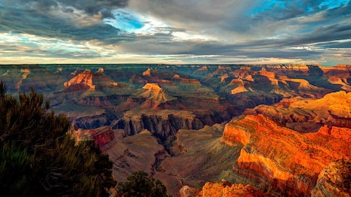 Landscape view of Grand Canyon from elevated point.