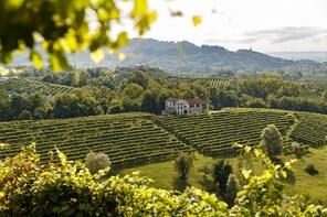 Wine&food experience at the estate in Valdobbiadene hills