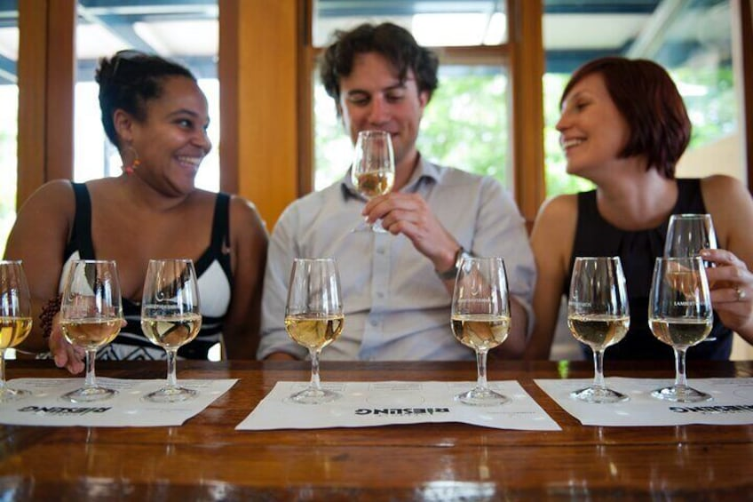 Enjoy a unique wine tasting experience
