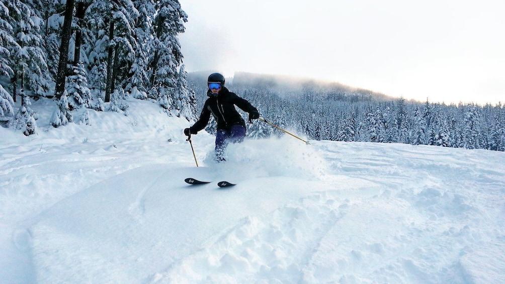 Show item 5 of 7. speeding skier kicking up snow in Whistler
