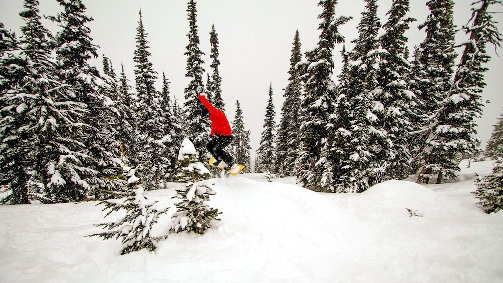 Show item 4 of 6. snowboarder jumping into the air in Whistler