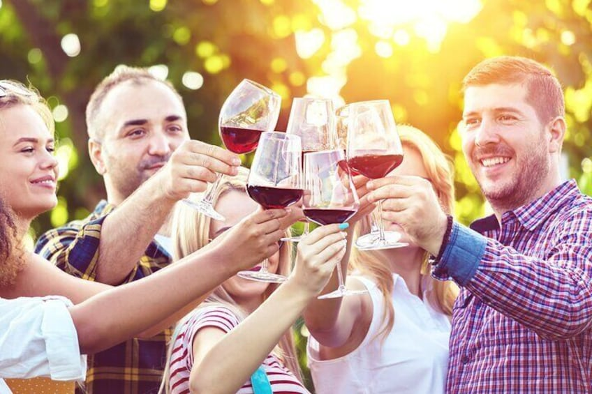 Group of friends drinking best Orange red wines on afternoon tour