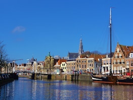 Haarlem Private Walking Tour Including Saint Bavo Church