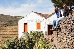 Vineyard tour and wine tasting at the winery in Pinhão