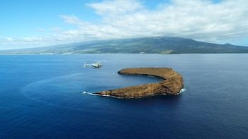 Private Helicopter Tour - Maui Nui
