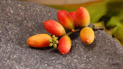 Small red and orange fruit