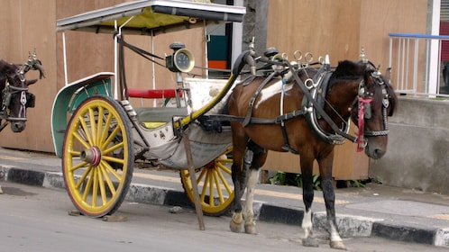 Horse-drawn carriage on a street in Borobudur
