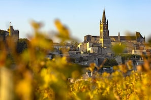 Saint Emilion Full-Day Wine Tour From Bordeaux