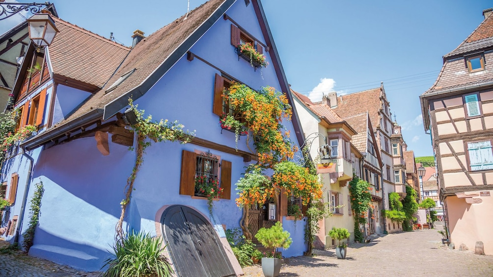 Show item 3 of 5. View from the street of the exteriors of homes in Eguisheim Alsace, France