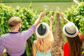 Full Day Wine Tour - Lake Country Scenic Wine Experience